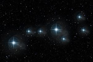 Selftution Stars