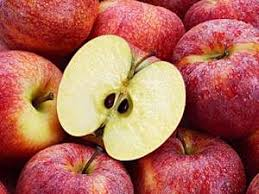 Apple seeds are enclosed inside a fruit